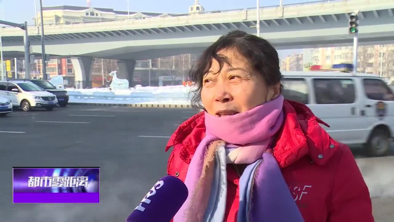 16处街路冰景等你打卡  不进景区也能时时赏冰雕