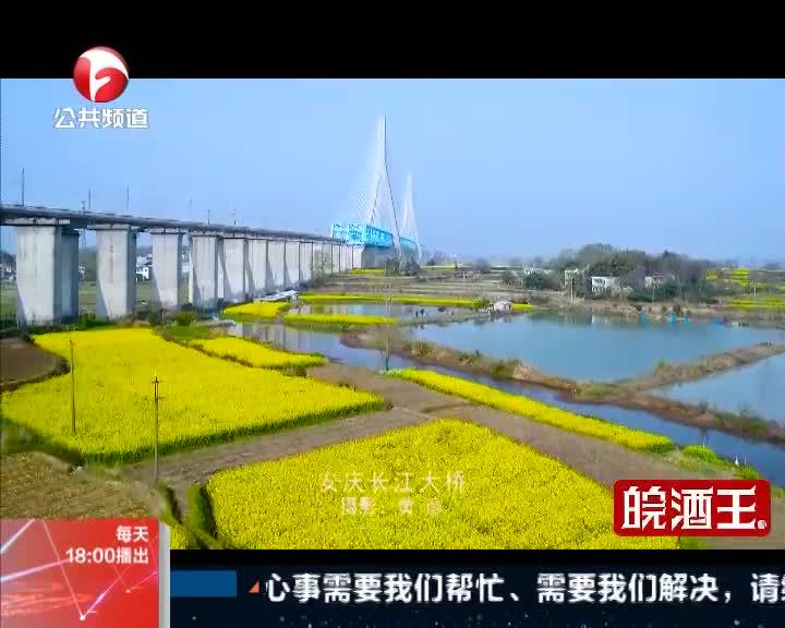 《新闻第一线》俯瞰安庆长江大桥