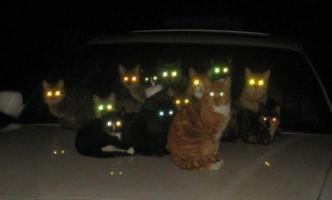 这些曾经又圆又萌的车灯,你最爱那一个?