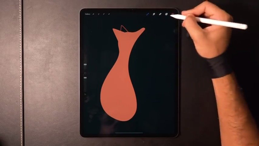 狐狸    Gal Shir    iPad Pro 插画