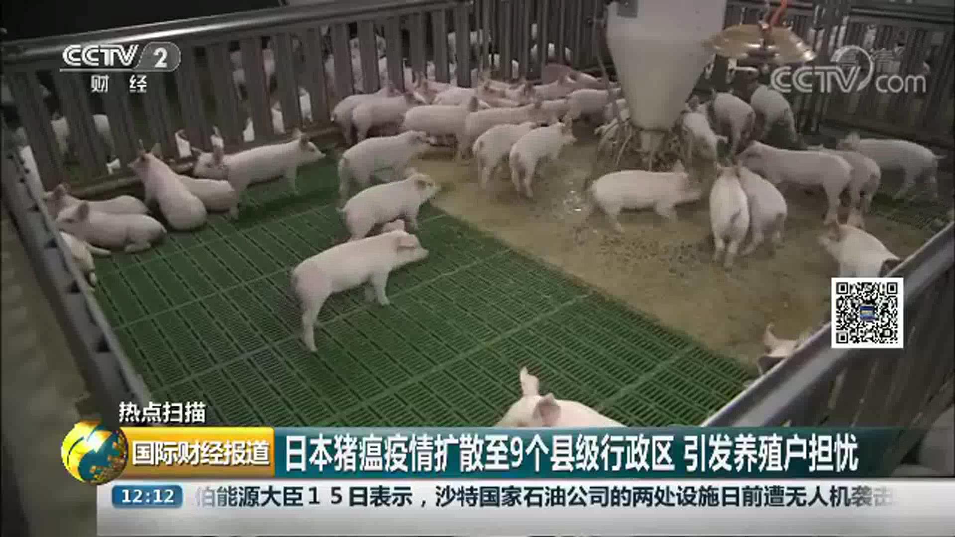 扑杀、填埋…20吨潜在感染风险猪肉被处理!,尚未查清疫情源头
