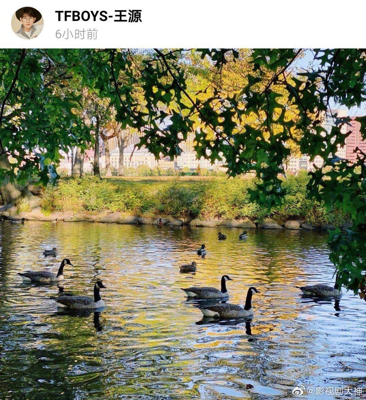 王源在社交网站分享了拍的风景照