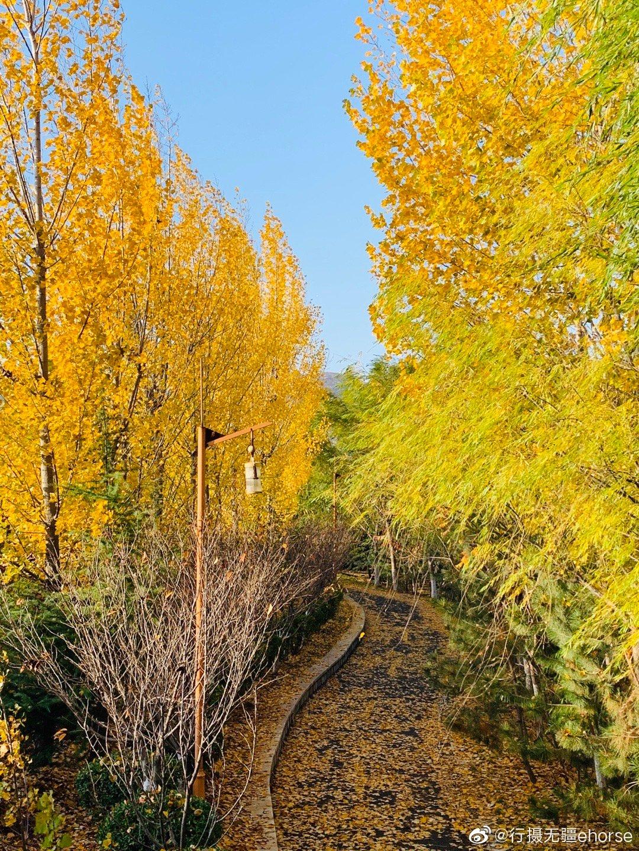 雪野湖是新济南的后花园,湖光山色非常唯美