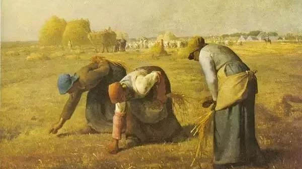 人文课堂|现代散文鉴赏:《拣麦穗》