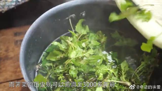 2300年前,中国人就在尝试驯化荠菜,为啥到了今天,它还只是野菜