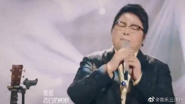 韩红唱《梨花又开放》余音绕梁,用情演绎感动全场!