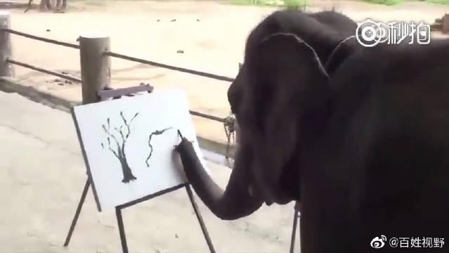 我感觉我的世界观已经被刷新了!这年头大象画画都比我好