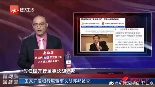 国家开发银行原董事长胡怀邦被查