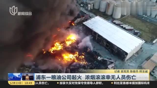 浦东一粮油公司起火,浓烟滚滚幸无人员伤亡,火灾原因正在调查中