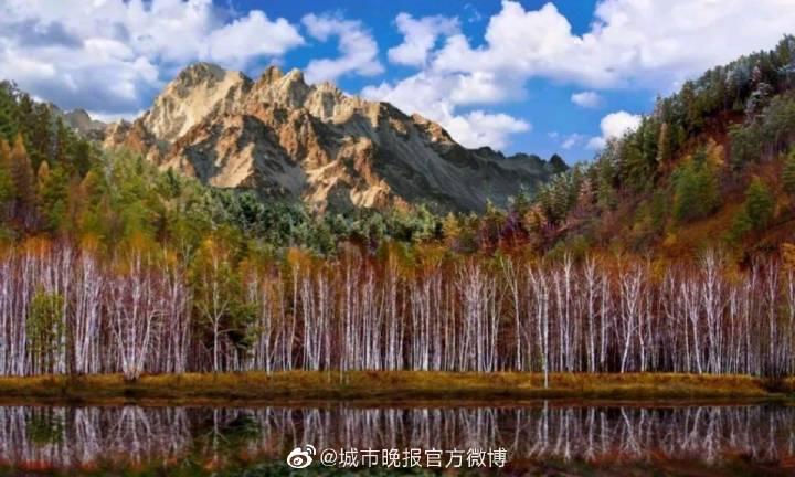 """长春市朝阳区晒出环卫工作""""成绩单"""