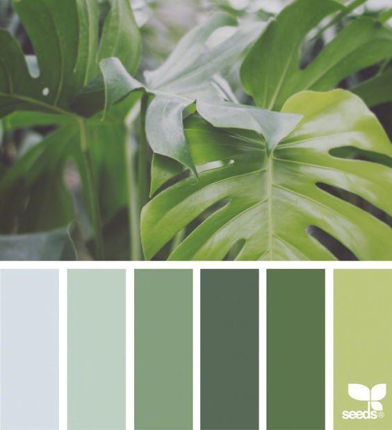 植物色卡。