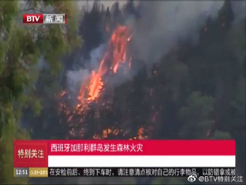 西班牙加那利群岛发生森林火灾