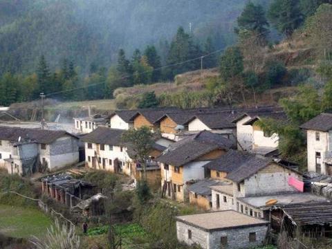 农村居民:十年后,农村哪些东西会变值钱?以下两样,有价值吗?