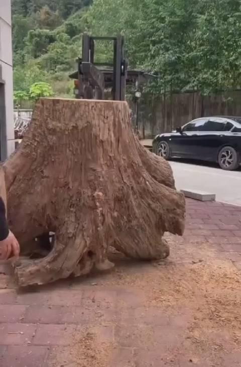 为这只木雕麒麟兽的诞生过程点赞,为手艺人点赞