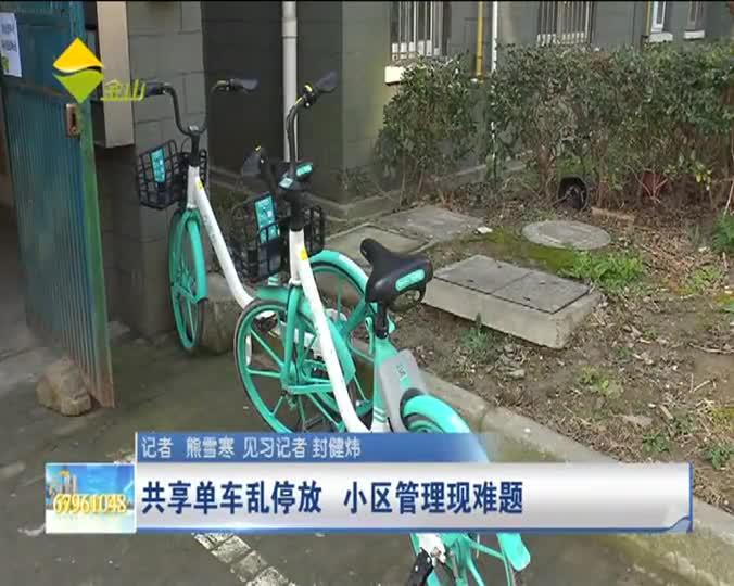 共享单车乱停放 小区管理现难题
