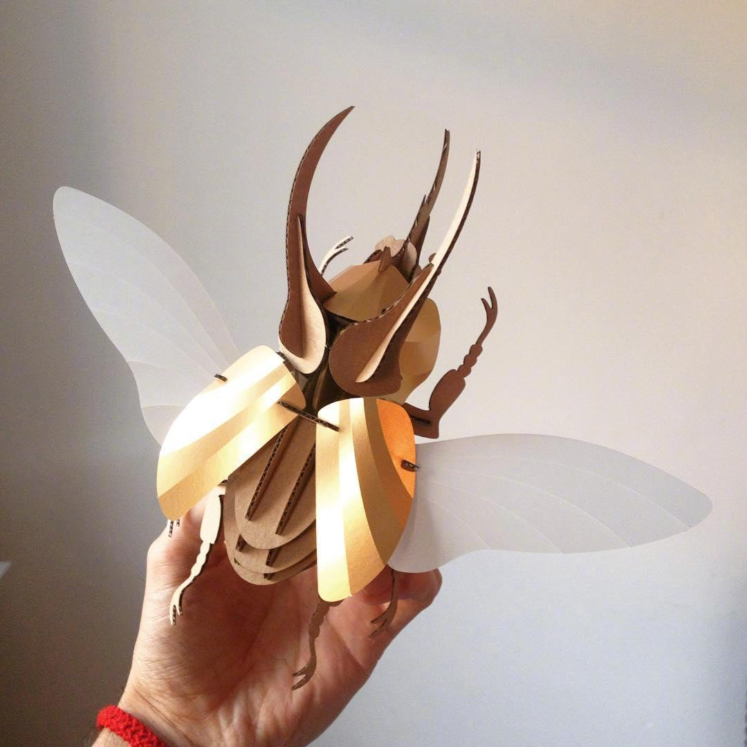 Assembli     利用纸张制作的甲壳虫 ——(今日艺术)
