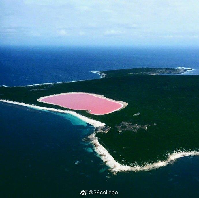 位于澳大利亚西南岸Recherche群岛里的 Lake Hillier粉色湖