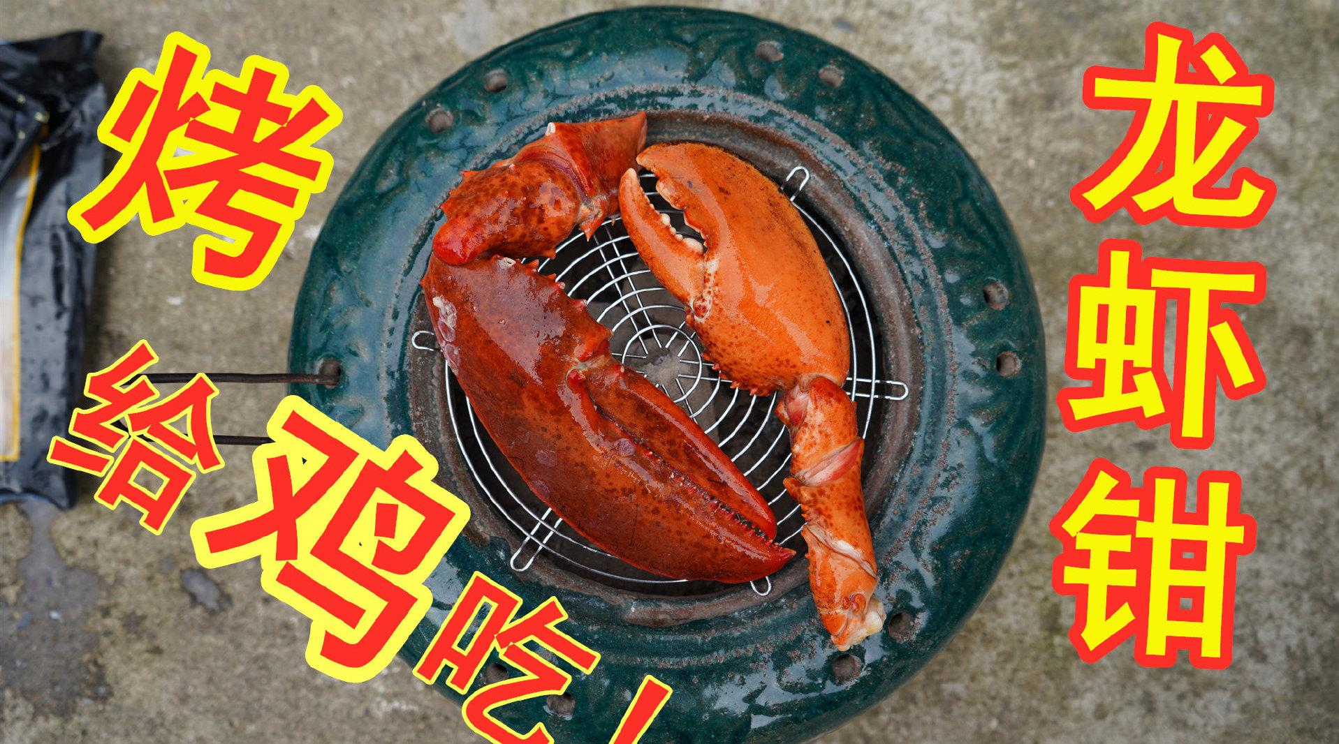 拆箱试吃巨型龙虾钳,用古董烤火炉烤着吃,老妈:吃着像面包