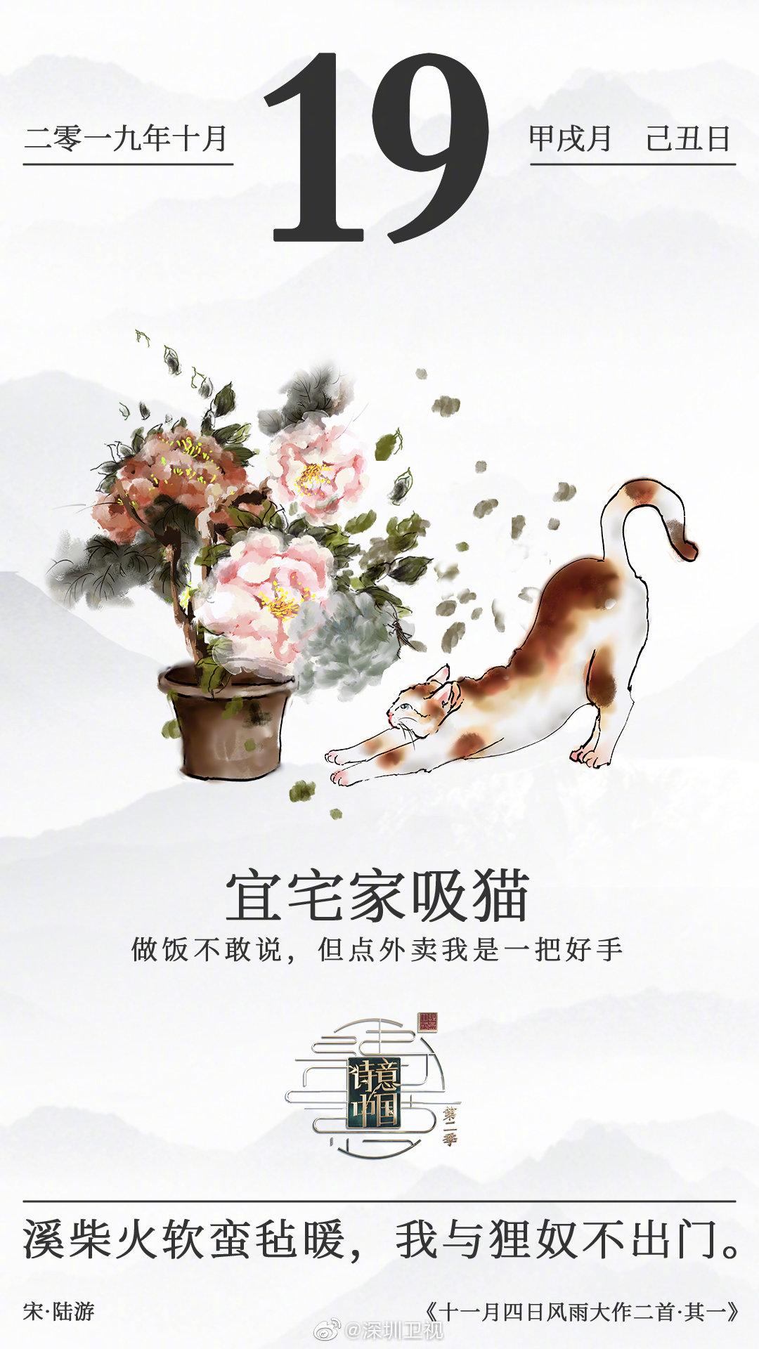 诗意单向历今日宜宅家吸猫深圳卫视《诗意中国》第二季营