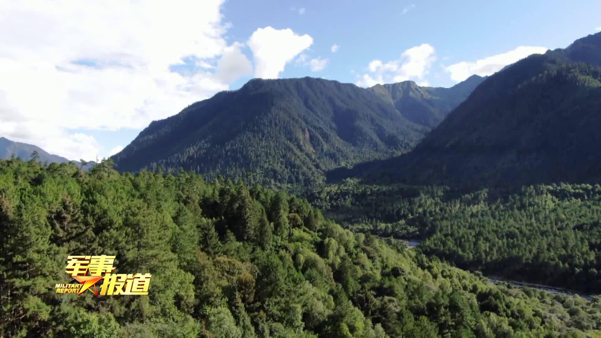 丛林搜索、岩壁索降、穿越沼泽、牵引横渡……西藏林芝军分区近日把侦