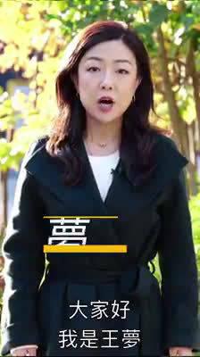 80后央视美女记者王梦@王梦Flyingdream ,把事情说得真明白