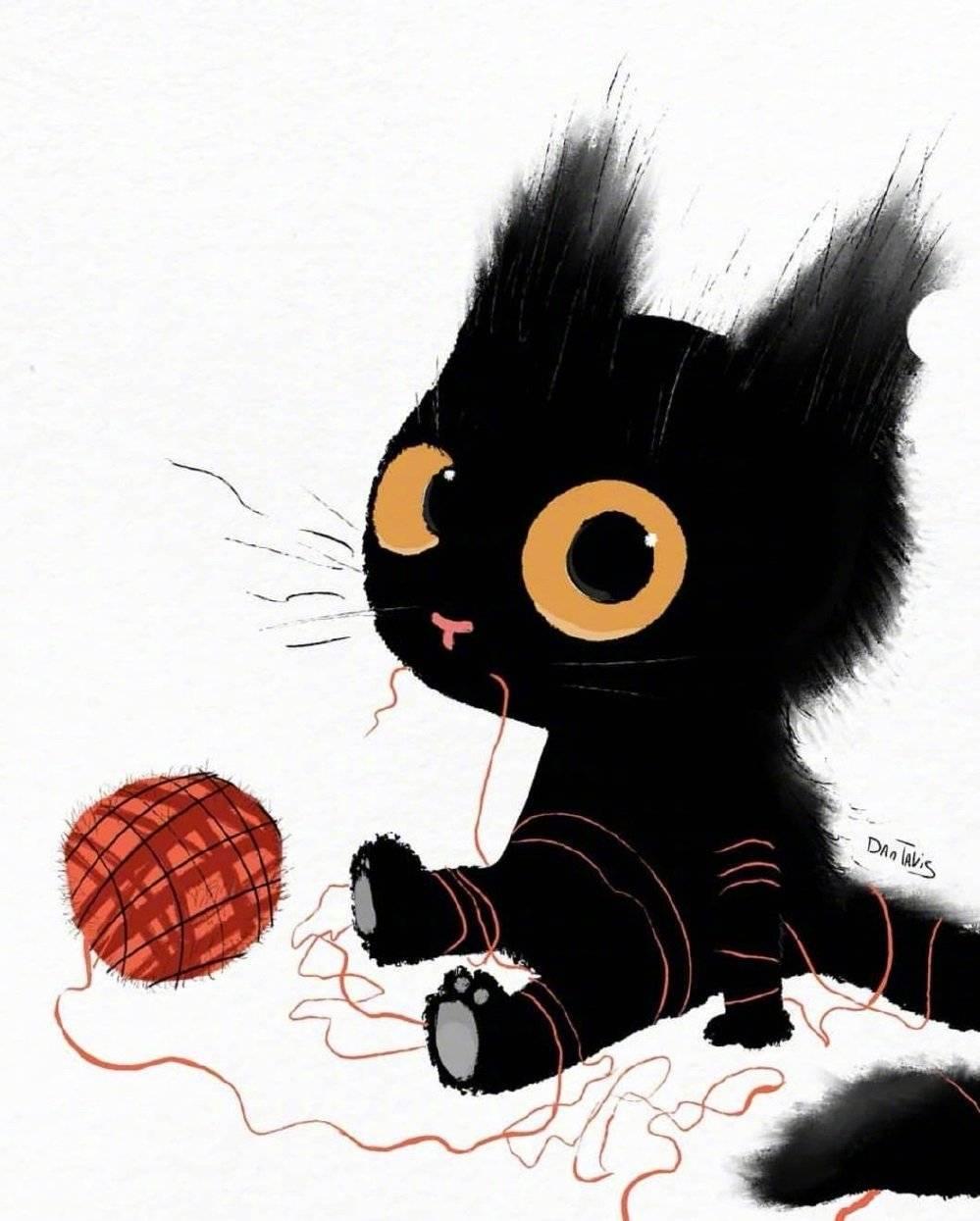 敲可爱的黑猫咪。by:Dan Tvis