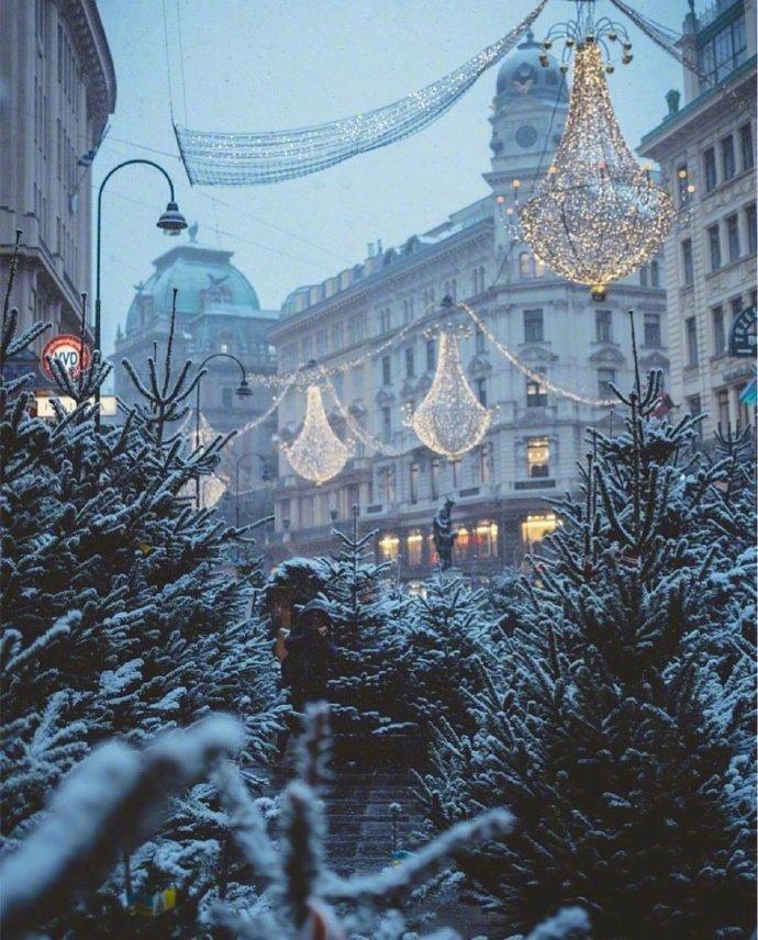 夏天就应该看看冬天!维也纳的冬季,满满的艺术气息