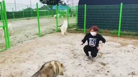 翻译:希希洙