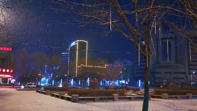 铁岭下雪了!雪~花漫天飞舞!比沈阳的雪认真!(视频:陈克军)