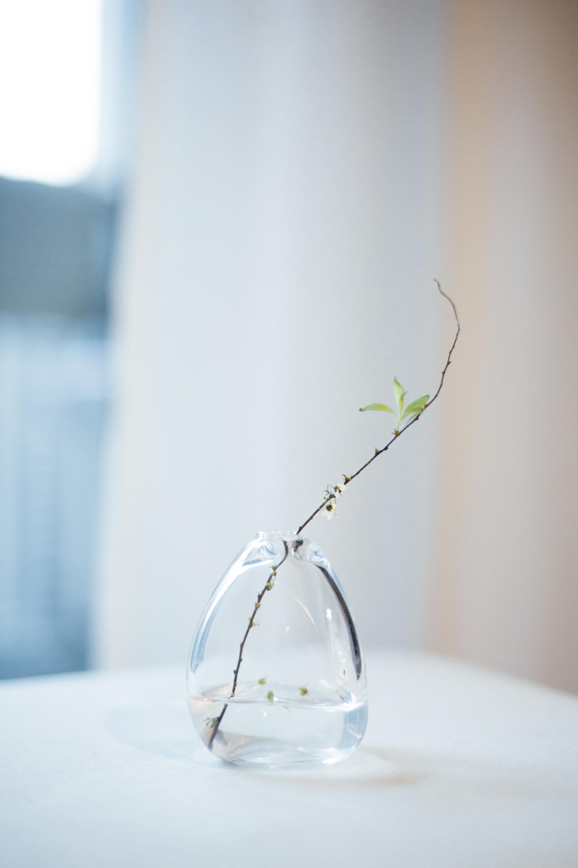 分享一组从日本丰岛美术馆带回来的微型花器,小小的