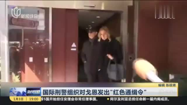 """谁策划的?戈恩神秘逃离东京后:国际刑警组织发""""红色通缉令"""""""