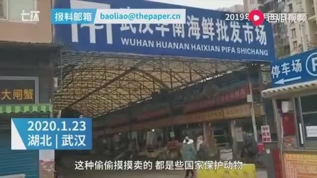 新型肺炎的罪魁祸首——武汉华南海鲜城:必须给全国人民一个交代