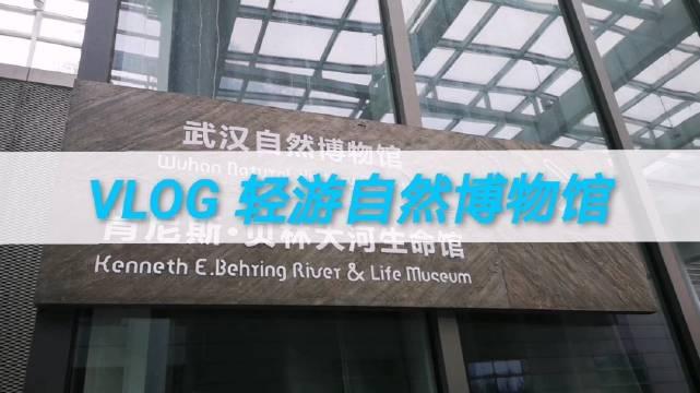 @我爱大米鱼 :轻游武汉自然博物馆。