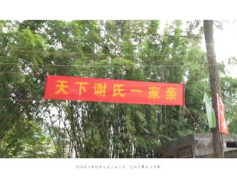 谢氏宗亲千人齐聚拜祖,深圳宝树堂家庭日圆满举行