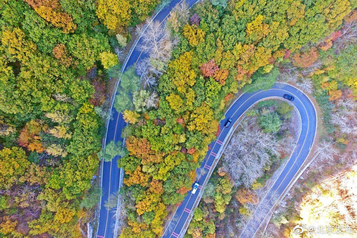 门头沟区灵山路两旁的树木色彩斑斓,犹如美丽画卷