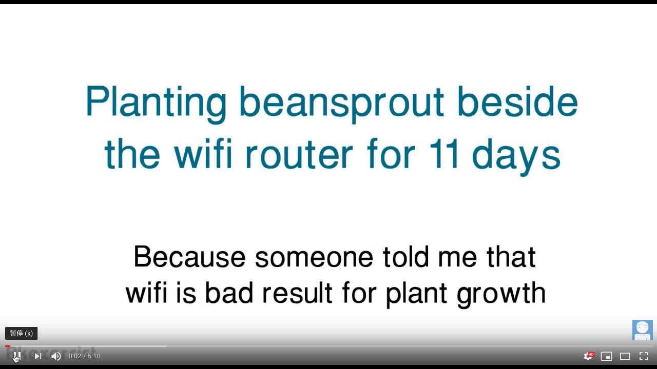 2013年丹麦的几个9年级学生,说wifi路由器能影响植物的生长