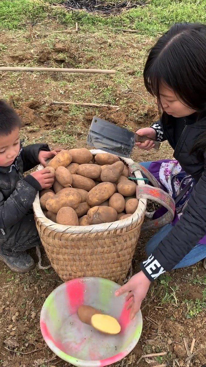 栽土豆的季节,小爸爸