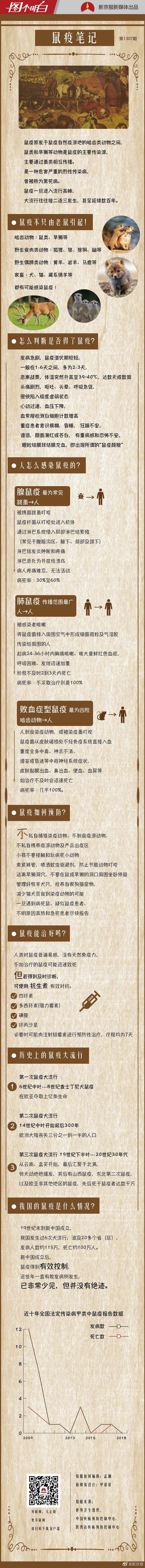 北京市民不用担心感染鼠疫风险