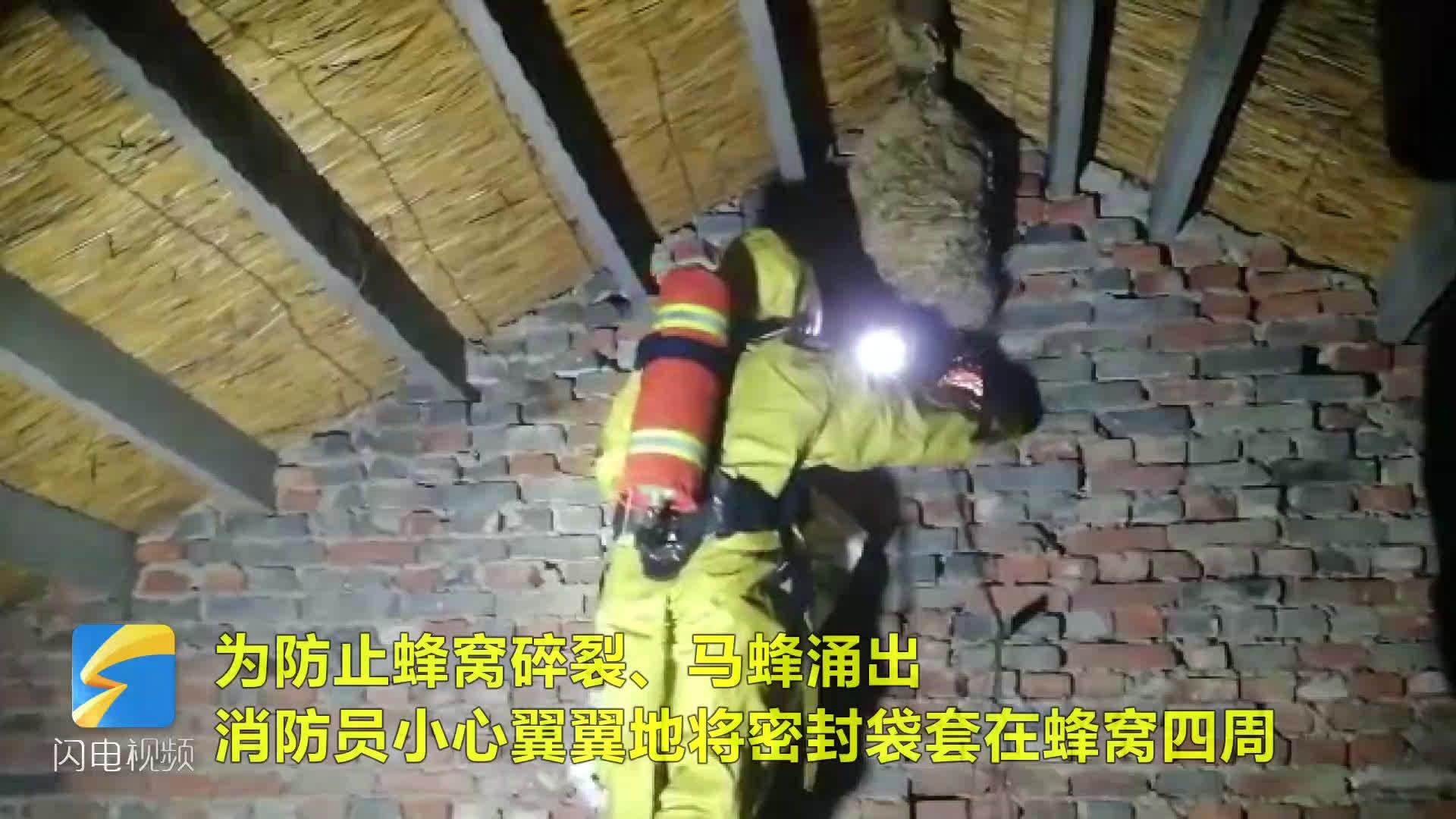 真吓人!潍坊昌乐一农户家中惊现直径超半米的马蜂窝