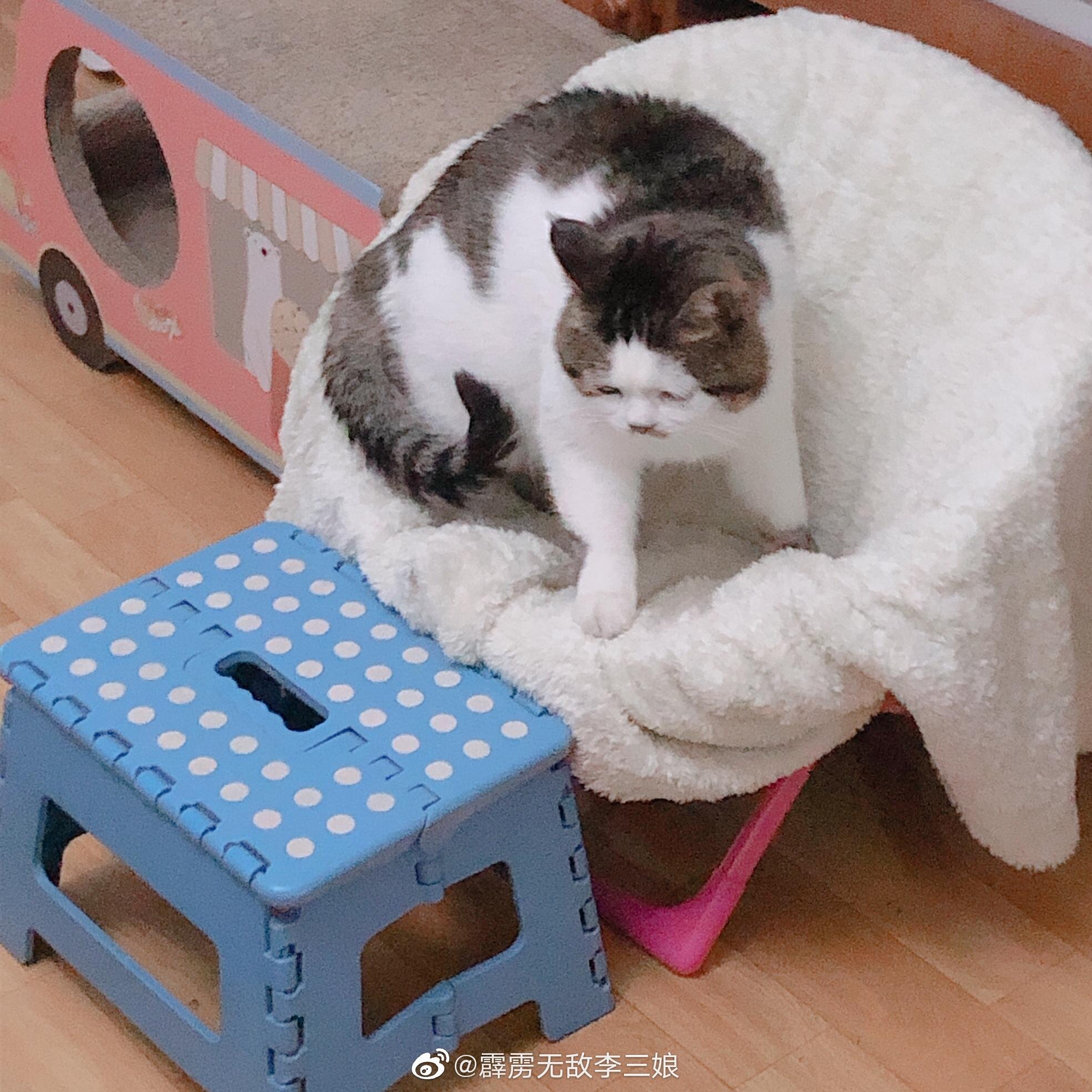 困了就睡椅子上,睡那不会摔跤大滋:好的,麻麻(眯眼睛)