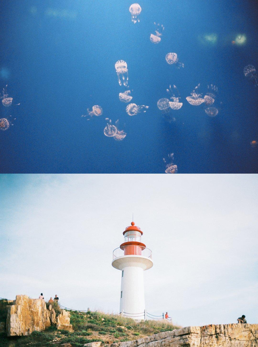 小�9�(9�d_每个人心中都有一个海岛控吧 via@小d哥-滴滴滴 烟台长岛.