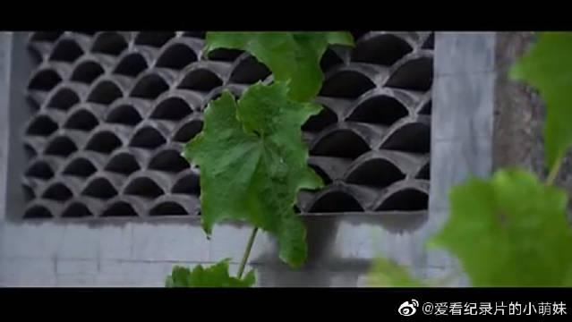 中国首部聚焦美术艺考生个体成长的人文纪录片