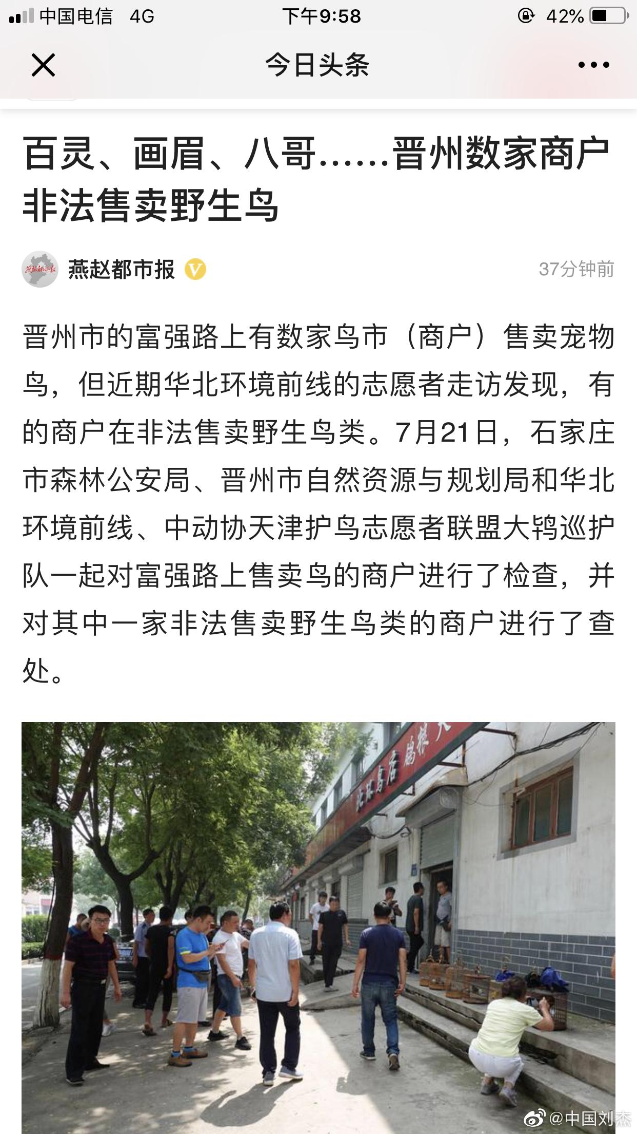 燕赵都市报:百灵、画眉、八哥……晋州数家商户非法售卖野生鸟……