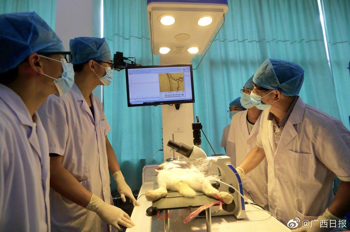 广西首个高校导入PPP模式的项目