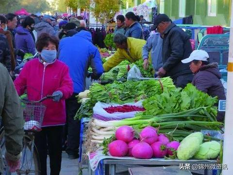 锦州秋天的早市,逛出生活的乐趣!大葱、萝卜、白菜老三样