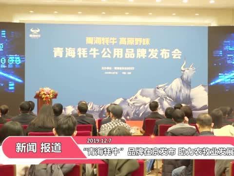 """""""青海牦牛""""品牌在京发布 助力农牧业发展"""