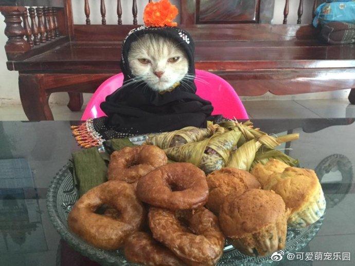 神经病啊,我不要面子,吃个东西把朕打扮成这样!