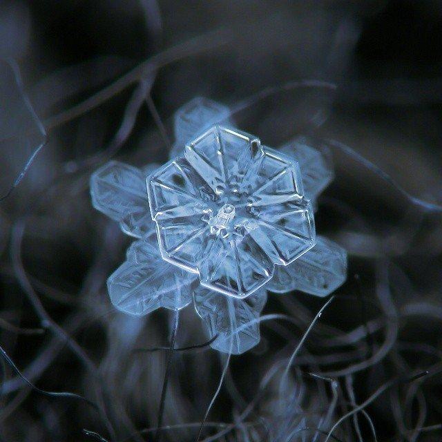 这是大自然送给我们的艺术品!ins:alexey_kljatov