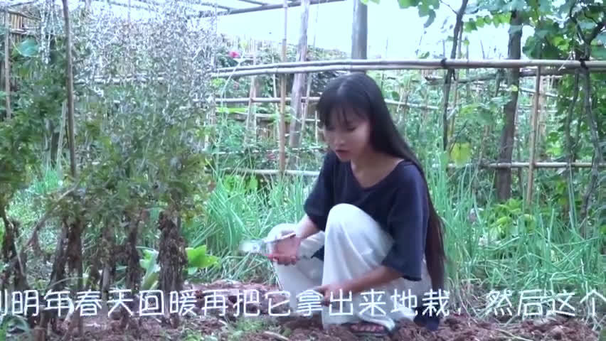"""书写""""中国文化""""的笔,握在我们每个人手里"""