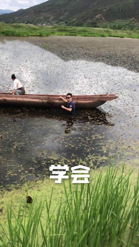 必须是暑假里,我跳到泸沽湖草海里去找无人机的桥段